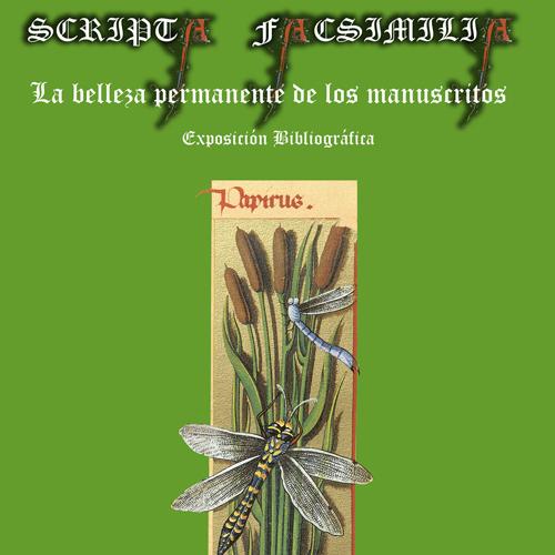 scripta-facsimilia-d