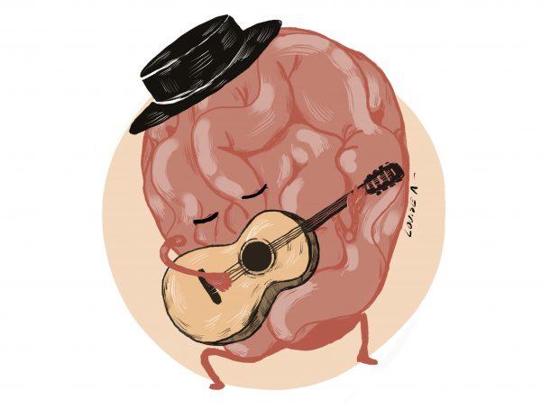 cerebro flamenco_2