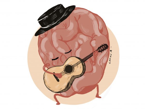 cerebro flamenco_2