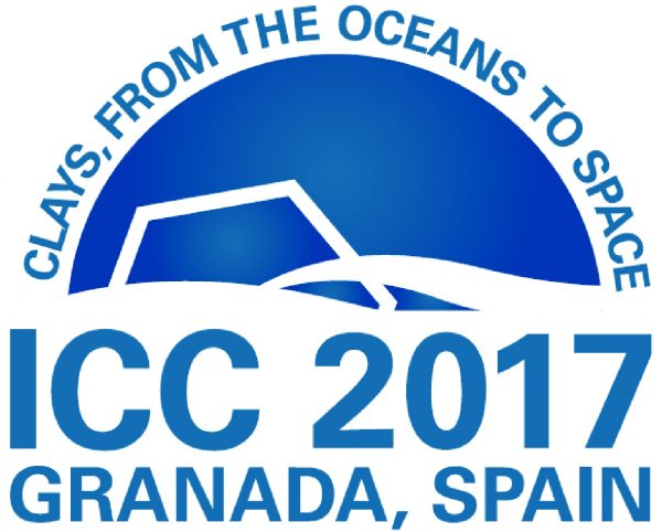Logo XVI ICC