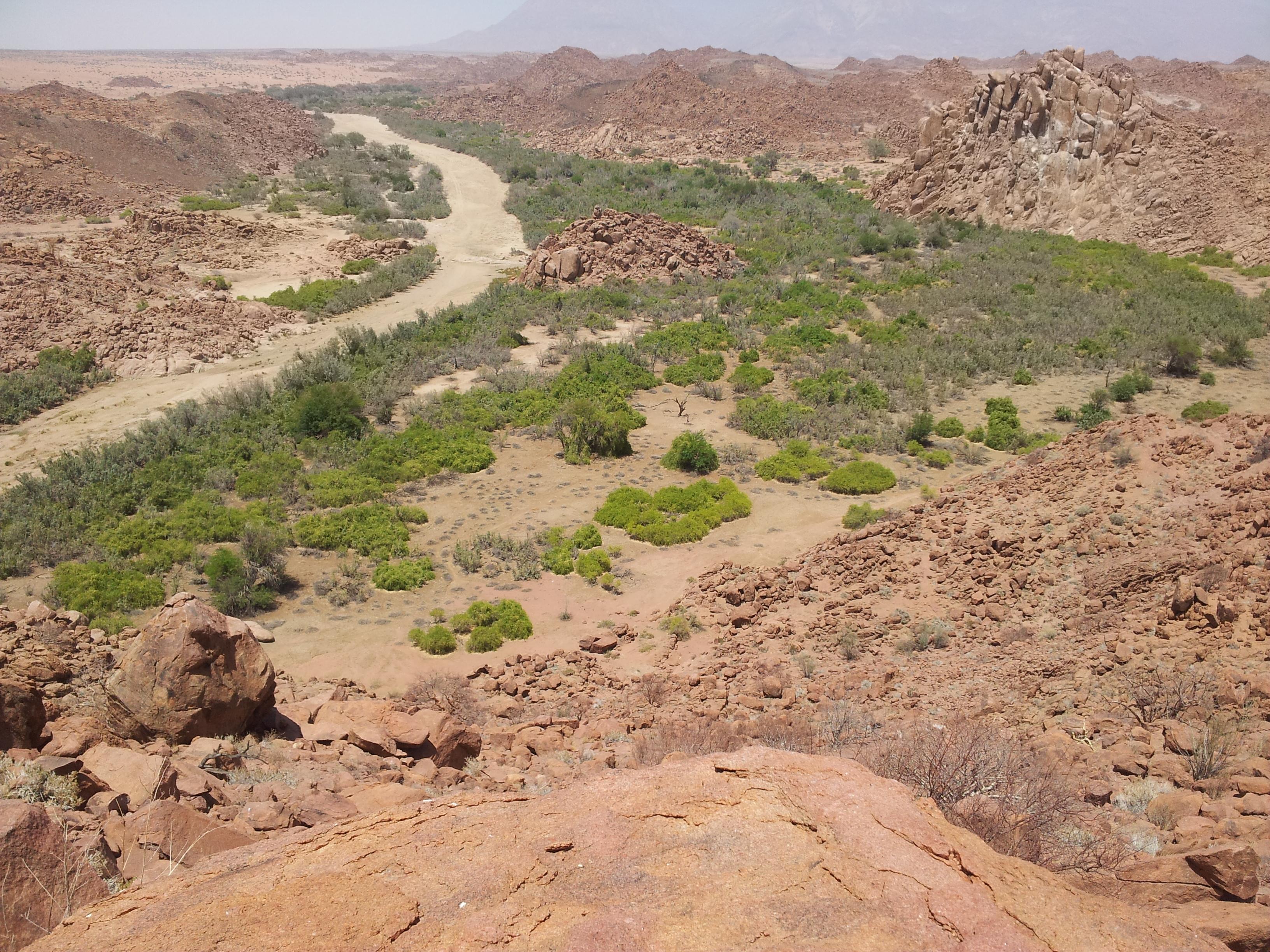 Rio Ugab, Namibia (Marcos Moleon)