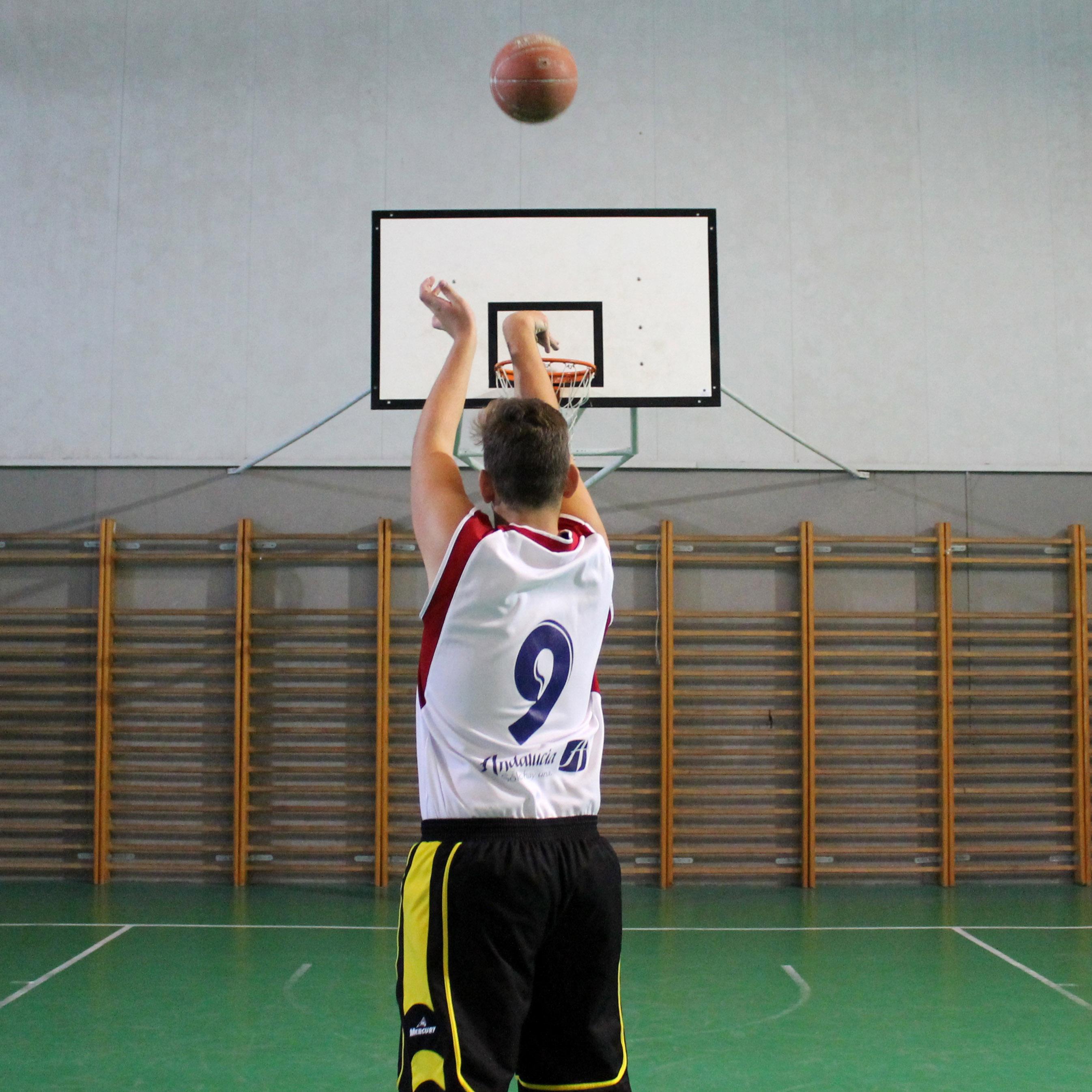 estudio basket